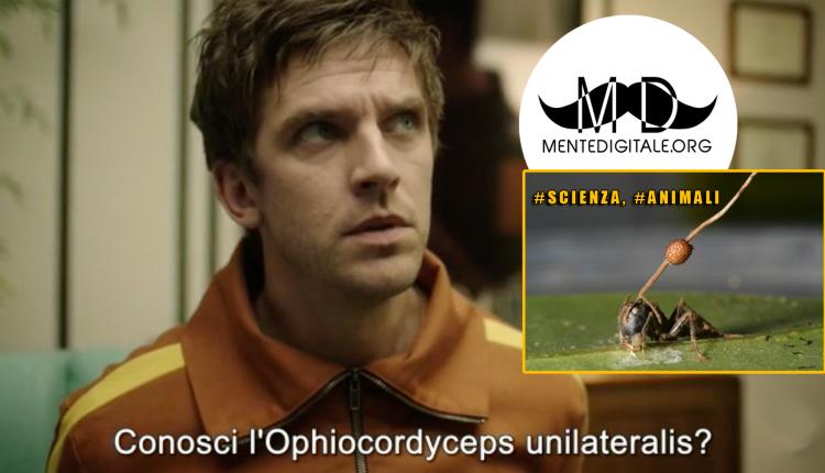 Il parassita zombificatore – Ophiocordyceps unilateralis